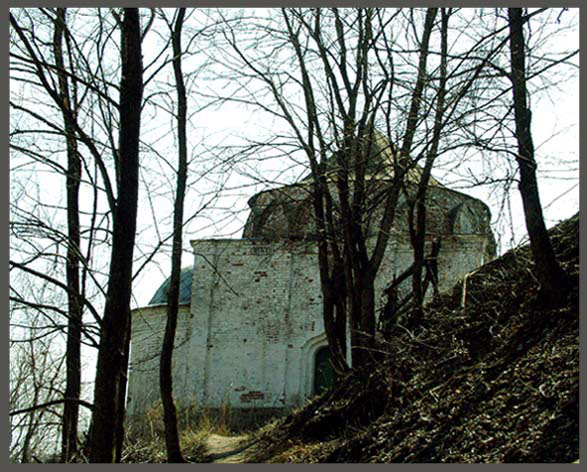 Владимирская область, Муромский район и г. Муром, Муром. Церковь Космы и Дамиана, фотография. архивная фотография