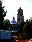 Церковь Троицы Живоначальной - Троицкое-Лобаново - Ступинский городской округ - Московская область