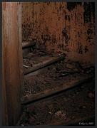 Церковь Ирины великомученицы - Волгово - Волосовский район - Ленинградская область