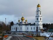 Церковь Николая Чудотворца - Середниково - Шатурский городской округ и г. Рошаль - Московская область