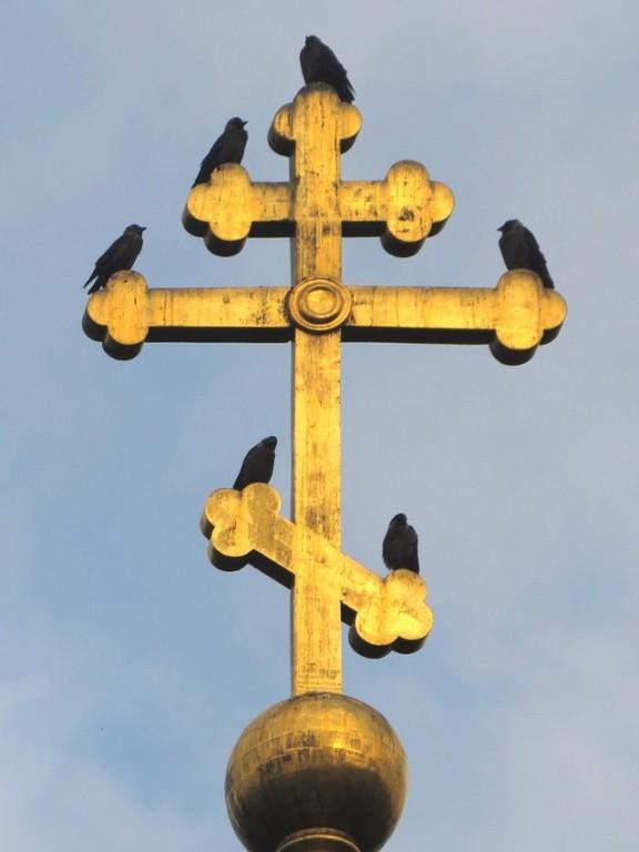 Тверская область, Калязинский район, Калязин. Церковь Богоявления Господня, фотография. архитектурные детали