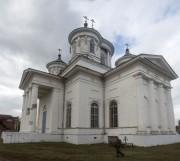 Кафедральный собор Вознесения Господня - Лысково - Лысковский район - Нижегородская область