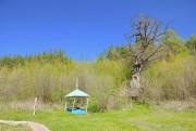 Введенская Макариевская пустынь - Жабынь, урочище - Белёвский район - Тульская область