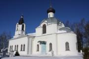 Церковь Троицы Живоначальной - Турбичево - Дмитровский городской округ - Московская область