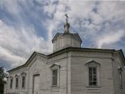 Церковь Спаса Всемилостивого - Сынтул - Касимовский район и г. Касимов - Рязанская область