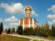 Церковь Димитрия Донского - Нижний Тагил - Нижний Тагил (ГО город Нижний Тагил) - Свердловская область