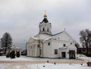Арзамас. Казанской иконы Божией Матери, церковь