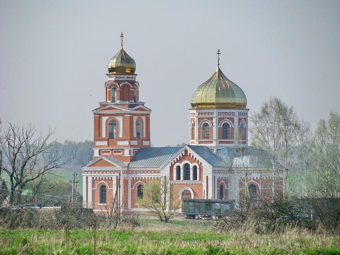 Брянская область, Брянский район, Госома. Церковь Бориса и Глеба, фотография. общий вид в ландшафте