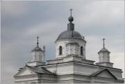 Воронье. Троицы Живоначальной, церковь