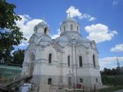 Донской. Донской монастырь. Церковь Иоанна Златоуста