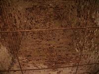 Церковь Успения Пресвятой Богородицы - Красный Городок - Ферзиковский район - Калужская область