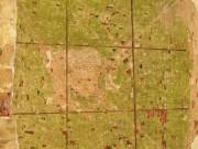 Антониев Краснохолмский монастырь. Церковь Вознесения Господня - Слобода - Краснохолмский район - Тверская область