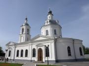 Церковь Николая Чудотворца - Алексин - Алексин, город - Тульская область