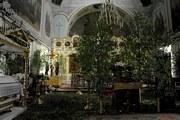 Кафедральный собор Успения Пресвятой Богородицы (новый) - Алексин - Алексин, город - Тульская область