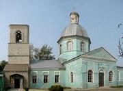 Церковь Михаила Архангела в Репном - Воронеж - Воронеж, город - Воронежская область