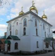 Троицкий монастырь. Собор Троицы Живоначальной - Лебедянь - Лебедянский район - Липецкая область