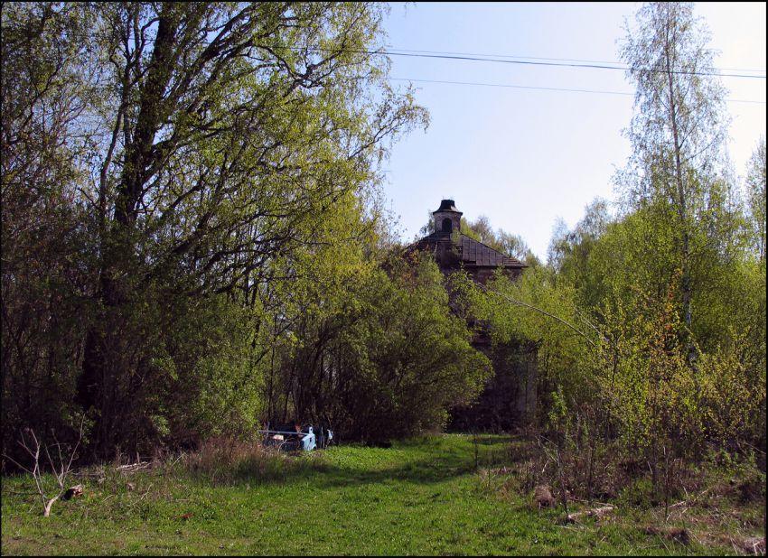 Вологодская область, Устюженский район, Никифорово. Церковь Параскевы Пятницы, фотография. общий вид в ландшафте
