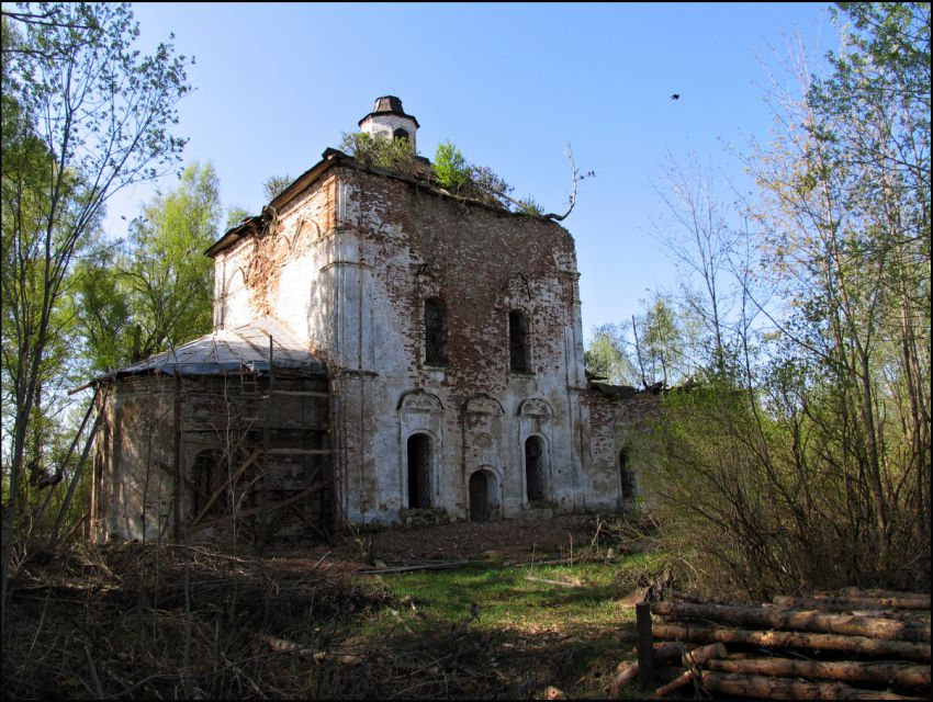 Вологодская область, Устюженский район, Никифорово. Церковь Параскевы Пятницы, фотография. фасады