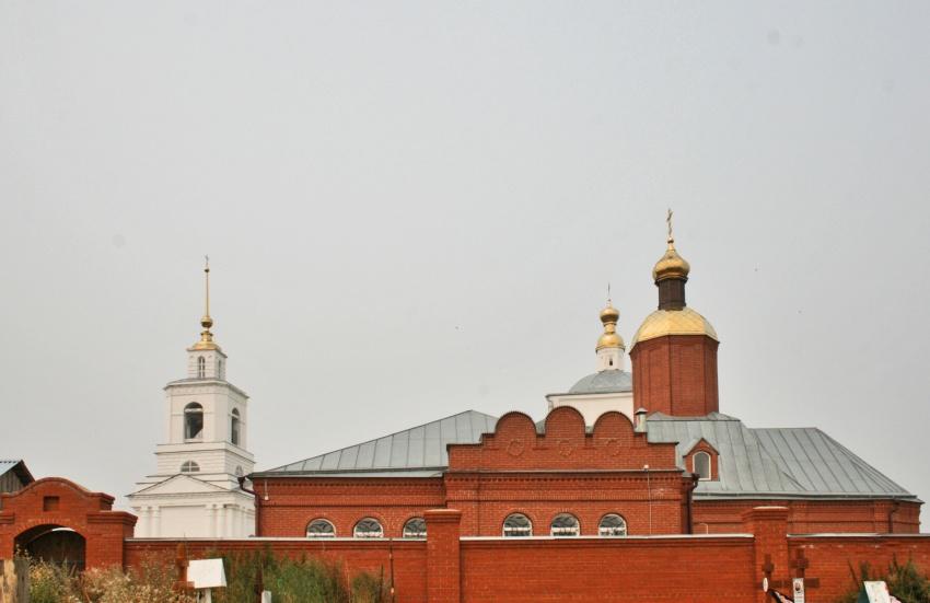 Рязанская область, Скопинский район и г. Скопин, Дмитриево. Димитриевский мужской монастырь, фотография. общий вид в ландшафте