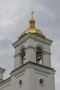 Церковь Рождества Христова - Поддубровка - Усманский район - Липецкая область