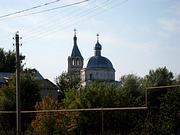Церковь Рождества Христова - Васильев Враг - Арзамасский район и г. Арзамас - Нижегородская область