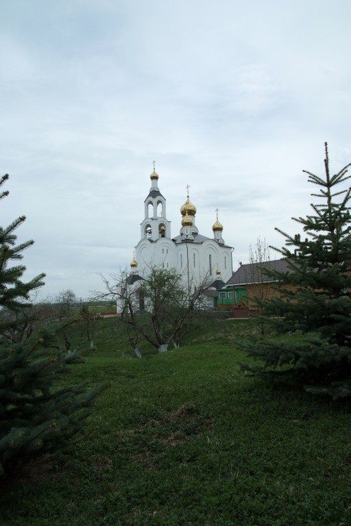 Варсонофиевский монастырь, Покровские Селищи