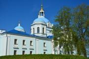 Деденево. Спасо-Влахернский монастырь. Собор Спаса Нерукотворного Образа
