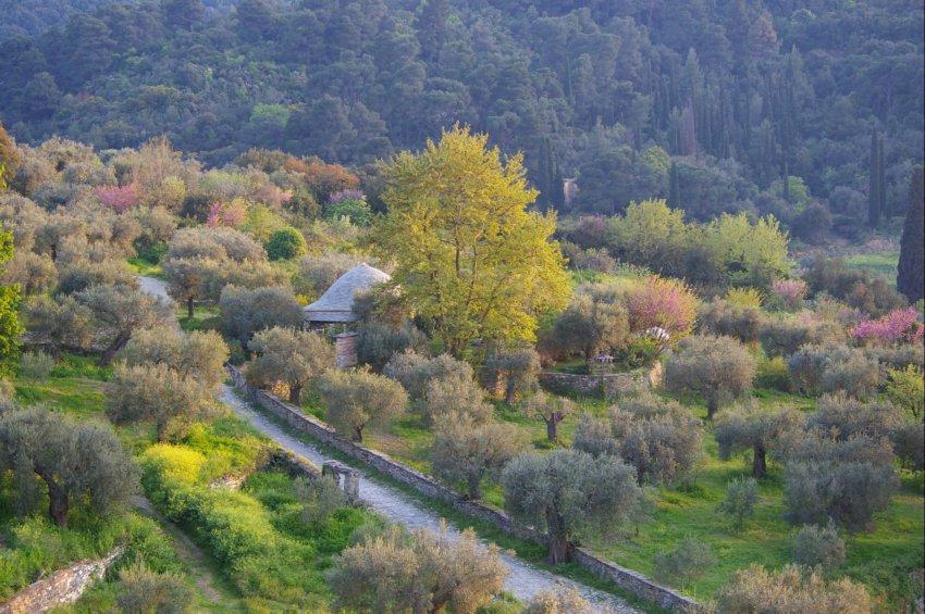 Монастырь Ватопед, Афон (Ἀθως)