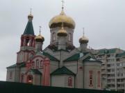 Кафедральный собор Троицы Живоначальной - Железногорск - Железногорский район - Курская область