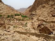 Космы и Дамиана, монастырь - Синайский полуостров - Египет - Прочие страны