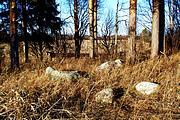Часовня Илии Пророка - Куликово - Белозерский район - Вологодская область