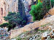 Иудейская пустыня, Вади Кельт (Нахаль Прат).