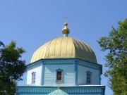 Церковь Казанской иконы Божией Матери - Большое Фролово - Буинский район - Республика Татарстан