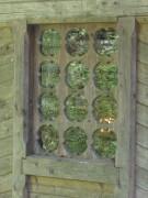 Часовня Смоленской иконы Божией Матери над чудотворным источником - Еленга - Вологодский район - Вологодская область