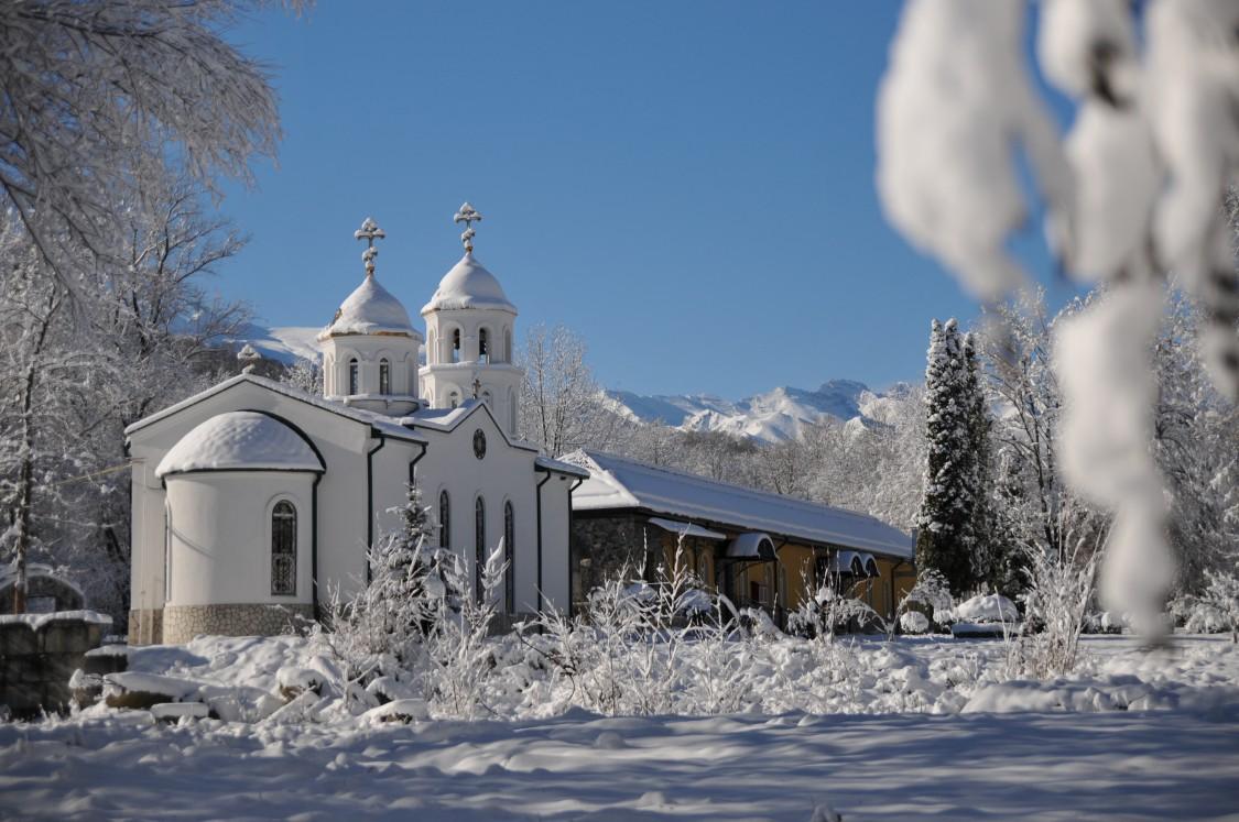 название гриб северный монастырь фото так