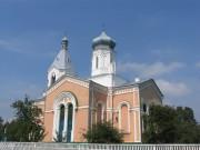 Церковь Успения Пресвятой Богородицы - Медведевка - Чигиринский район - Украина, Черкасская область