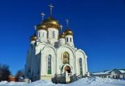 Церковь Троицы Живоначальной (новая) - Тамбов - Тамбов, город - Тамбовская область