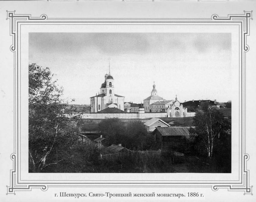 Троицкий Шенкурский женский монастырь, Шенкурск