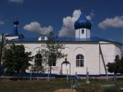 Церковь Рождества Пресвятой Богородицы - Фролово - Фроловский район и г. Фролово - Волгоградская область