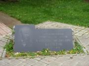 Часовня-усыпальница на могиле А.М. Бутлерова - Бутлеровка, урочище - Алексеевский район - Республика Татарстан