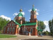 Тойси. Троицы Живоначальной, церковь
