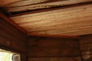 Часовня Воздвижения Креста Господня - Васильевская - Шенкурский район - Архангельская область