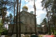 Тенистый. Антония (Смирницкого) в Тенистом, церковь