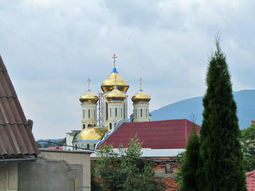 Украина, Закарпатская область, Хустский район, Хуст. Кафедральный собор Кирилла и Мефодия, фотография. общий вид в ландшафте