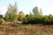 Церковь Спаса Нерукотворного Образа - Спасское - Богородский район - Кировская область