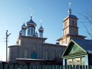 Церковь Троицы Живоначальной - Лениногорск - Лениногорский район - Республика Татарстан