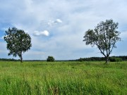 Часовня Арефы, великомученика - Раколово, урочище - Каргопольский район - Архангельская область