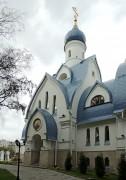 Церковь Покрова Пресвятой Богородицы в Орехове-Борисове (новая) - Москва - Южный административный округ (ЮАО) - г. Москва