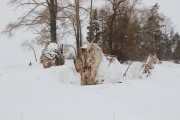 Церковь Воскресения Христова - Шумаровский Остров, урочище - Рыбинский район - Ярославская область