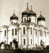 Церковь Троицы Живоначальной - Мензелинск - Мензелинский район - Республика Татарстан